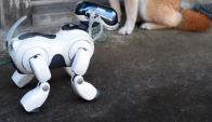 AIBO fue el primer perro robot que lanzó Sony en 1999. (Foto: AFP)