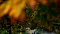Soleado. Foto: AFP