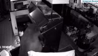 Tres osos entraron en una pizzería de Estados Unidos. Foto: Captura