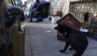 Lindolfo Cuestas: hace 5 años que Nilo instaló su casa y la de Tommy, su mascota, en la vereda frente a la rambla portuaria. Foto: Fernando Ponzetto