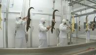 Faena. La empresa procesa 85 animales por día y trabaja con nueve cortes.