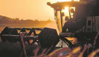 Agricultura. Foto: El País