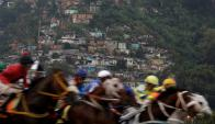 """Los venezolanos juegan a """"los animalitos"""" en un intento por lograr recursos para los gastos mensuales. Foto: Ricardo Morales (Reuters)"""