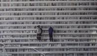 La biblioteca futurista china, más ilusión que libros