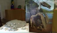 Cientos de huevos fósiles revelan los secretos del pterosaurio