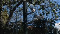 Cámaras de vigilancia serán desplegadas en varias zonas. Foto: F. Ponzetto