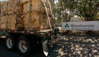 La venta de la compañía forestal a un fondo brasileño superó los US$ 400 millones. Foto: Weyerhauser