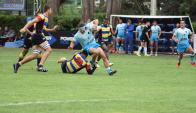 Los Teros. Foto: RugbyChile.cl.