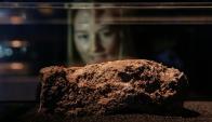 El fatberg expuesto en Londres. Foto: AFP