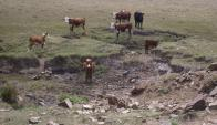 Escasez de agua. Foto: Néstor Araújo