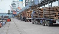 Ubicación. La producción de pinos en Uruguay se concentra sobre todo en Rivera y Tacuarembó. Foto: archivo El País.