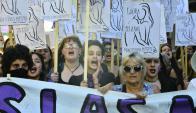 Marcha: miles de mujeres se concentraron el 8 de marzo. Foto: D. Borrelli