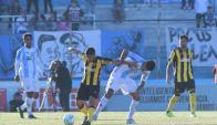 Cerro recibirá a Peñarol en el Estadio Luis Tróccoli. Foto: Archivo El País.