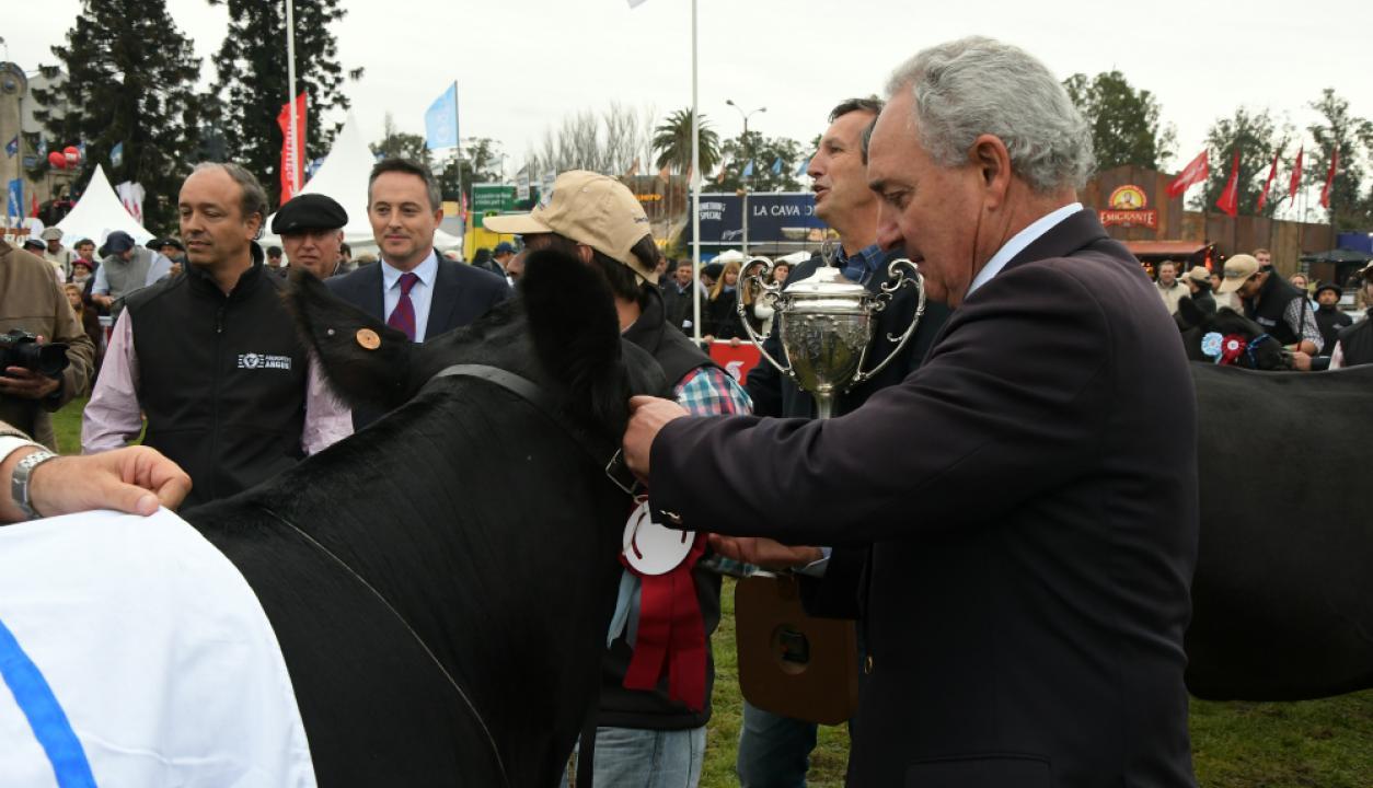 Sol y premios en la Expo Prado 2017. 13/09/2017