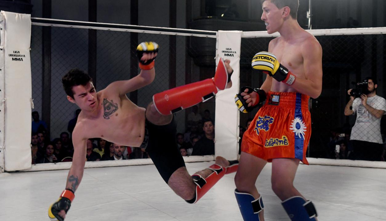 Pelea de MMA. Foto: Ariel Colmegna