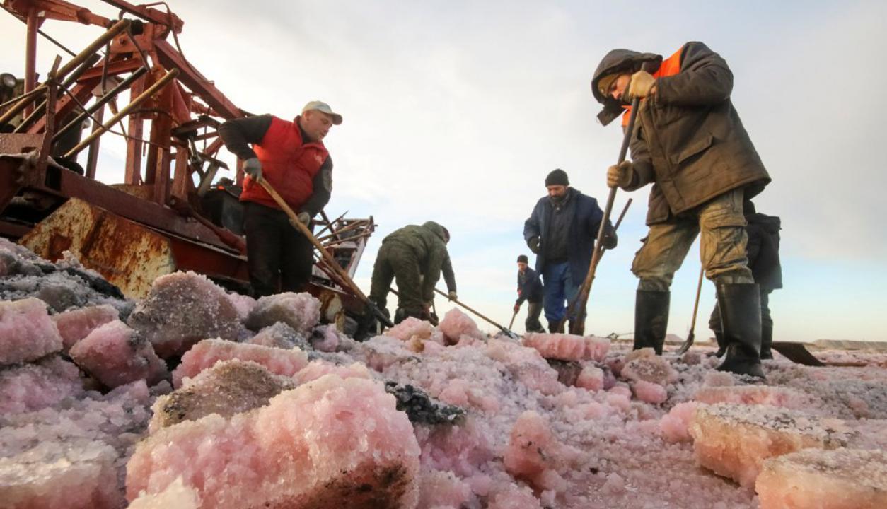 sal rosada en las márgenes del Mar Negro. Foto: Reuters