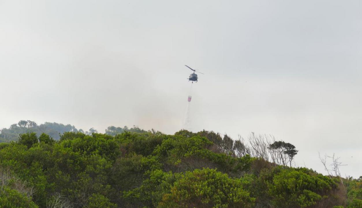 Bomberos, Intendencia y Fuerzas Armadas combaten un incendio en la zona conocida como Playa del Barco. Foto: Ricardo Figueredo