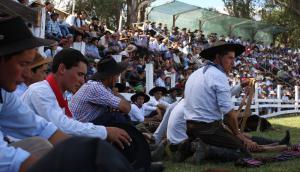 Jinetes en la previa a competir en la Patria Gaucha. Foto: Faustina Bartaburu