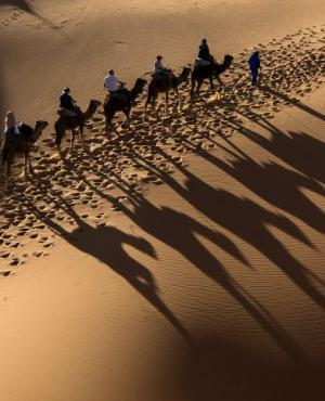 """Carrera ecuestre, """"Gallops of Marruecos"""". Foto: AFP"""