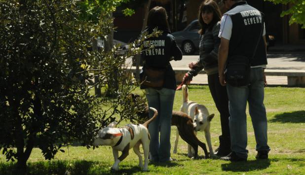 Inspectores controlan perros. Foto: archivo El País