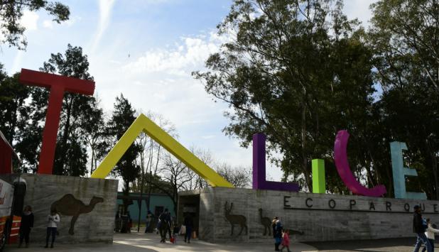 Tálice: cambió el movimiento turístico de Flores. Foto: L. Mainé